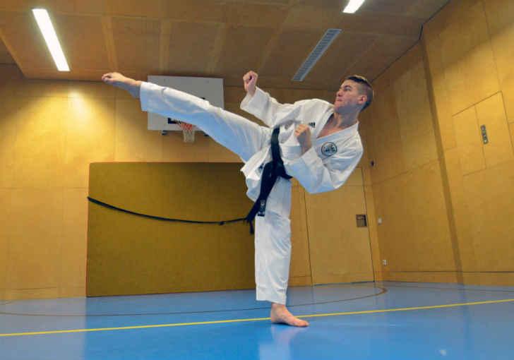estilos de karate