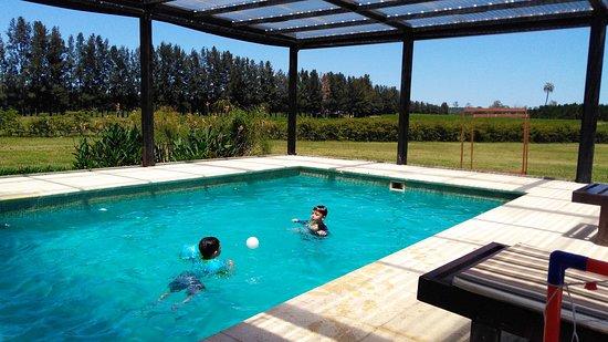 piscina techada imagen