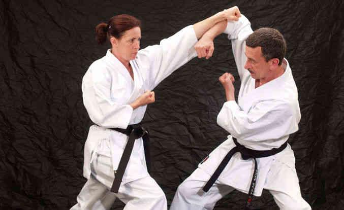 karate estilos
