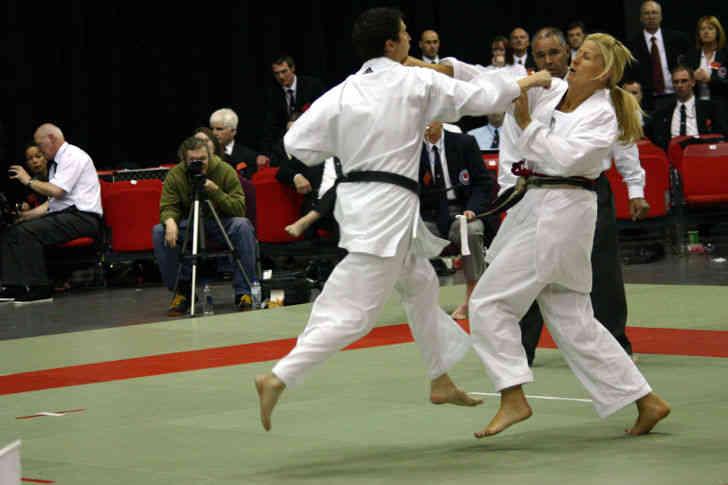 estilo shotokan