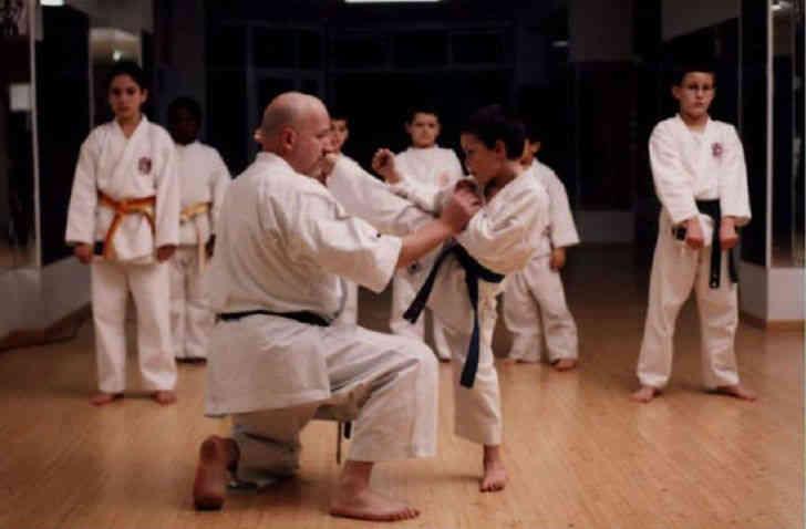 estilo karate